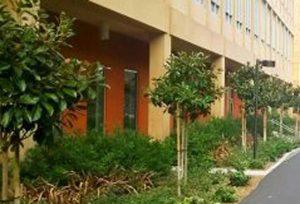 留学インタビュー(11) University of California, Irvine (Part1)