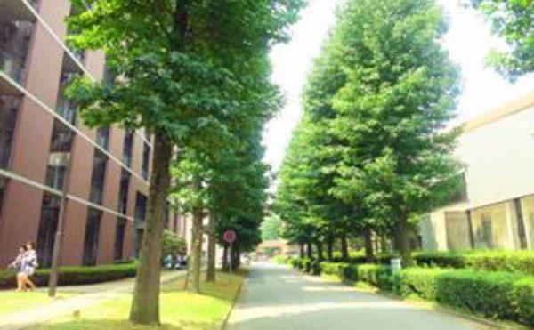 国内大学オープンキャンパス情報【春】